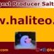 salt lamps website