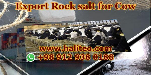 Buy rock salt livestock
