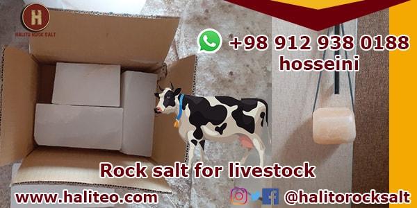 supply rock salt