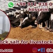 livestock rock salt