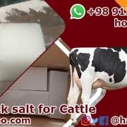 producer of livestock salt
