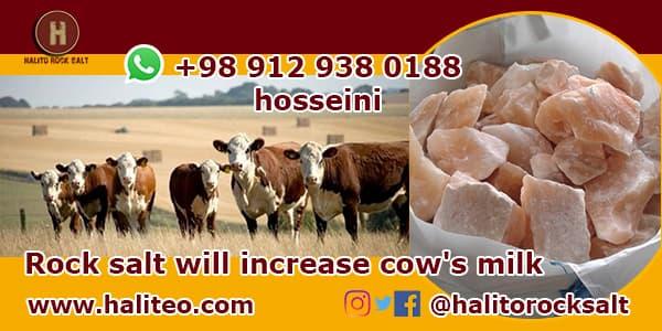 mineral animal feed salt