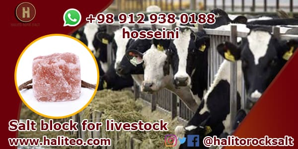 Livestock salt