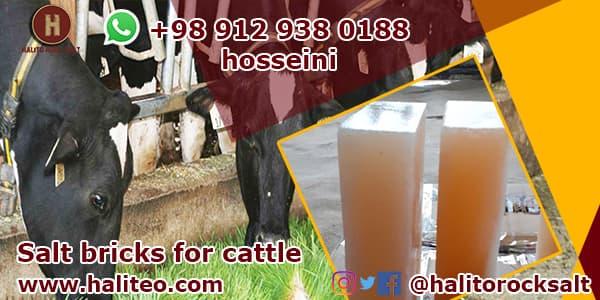 rock salt for cattle