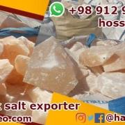 Salt bricks for cattle