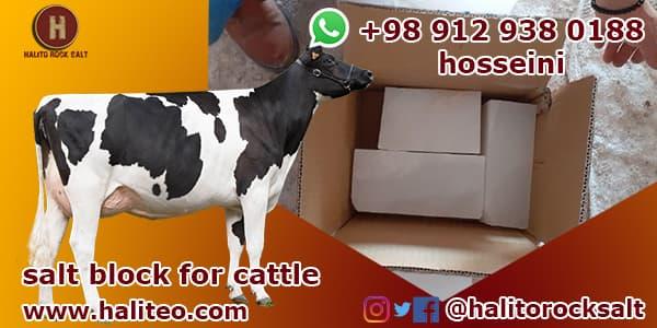 Salt blocks for cattle